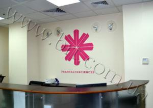 декор стен в офисе